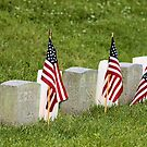 Remembering and Honoring the Fallen I by Mike Griffiths