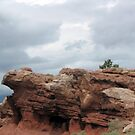 Landscape in New Mexico via Hwy 25 by janetmarston
