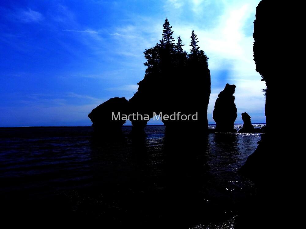 Hopewell Rocks In Silhouette by Martha Medford