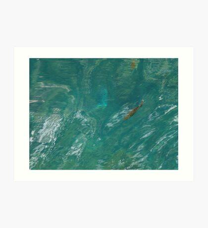 Cool Clear Water Art Print