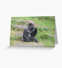 Gorilla Eating A Carrot Greeting Card