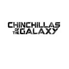 Chinchillas of the Galaxy - Black on White by McBethAllen