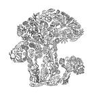 Fungi - Black and White - Evolution  by EvolutionPoster