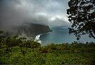 Hawaii, Waipio Valley Overlook by photosbyflood