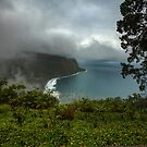 Hawaii, Waipio Valley Overlook by photosbyflood