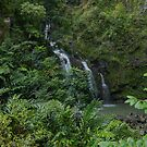 Maui Hawaii Waterfalls on Road to Hana by photosbyflood