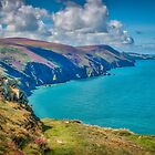 View to Lundy by Viv Thompson