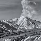 Denali in B&W  The Alaska Range  by John  Kapusta