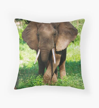 Grazing Elephant Throw Pillow