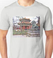 Temple, Beijing, China Unisex T-Shirt