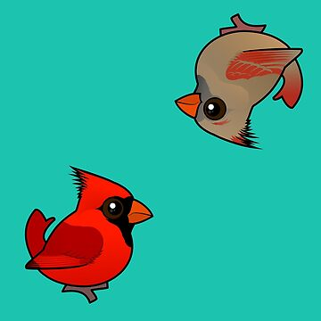 Birdorable Male & Female Northern Cardinal Pattern by birdorable