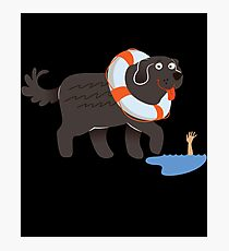 Newfoundland Newfie Swimming Gift Idea   Photographic Print
