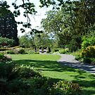 A Garden Area at Government House - Victoria, B.C. by Carol Clifford