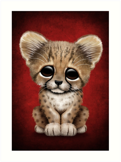 Cute Baby Cheetah Cub on Red by jeff bartels