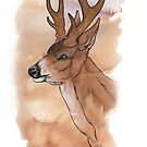 Brown Stag by Teresewa