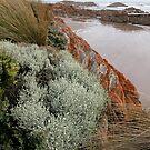 Arthur River Coastline, North  West Tasmania, Australia. by kaysharp