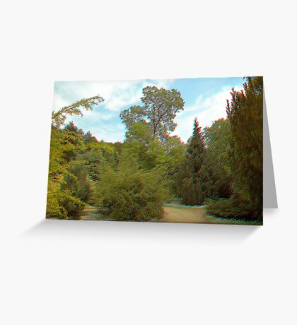 [3d Anaglyph] Erdőtelek (part 2.) Greeting Card
