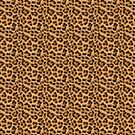 Leopard spots pattern by quentinjlang