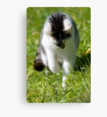 Hunter Canvas Print