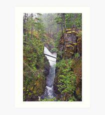 Little Qualicum Falls, Canada Art Print