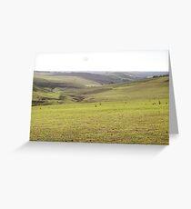 Barrabool Farmland Greeting Card