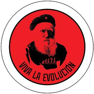 evolution by strepho