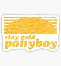 Stay Gold, Ponyboy Sticker