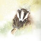 Badger  by Ray Shuell