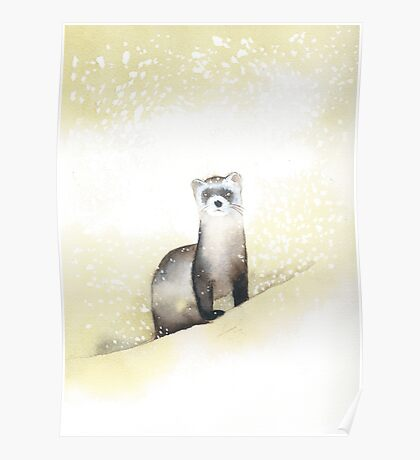 Ferret in the Snow Poster