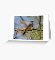 Kingbird Greeting Card