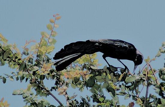TREE DWELLERS SER 9 by Paul Quixote Alleyne