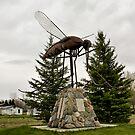 Giant Mosquito by Teresa Zieba