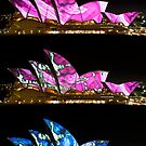 Changing Chameleon - SOH during Vivid - Series 2 by Jason Ruth