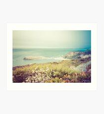 Côte du Pacifique en Californie Impression artistique