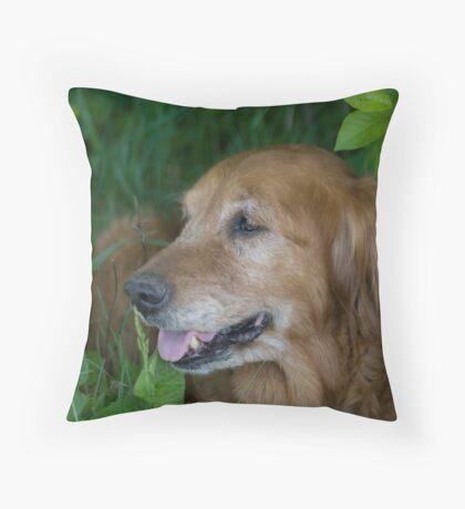 Red Golden Throw Pillow