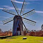 Boyd's Grist Mill by Nancy Richard