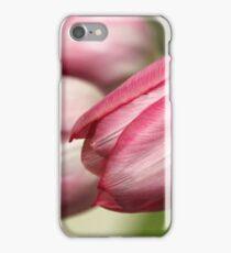 Spring Greetings III iPhone Case/Skin