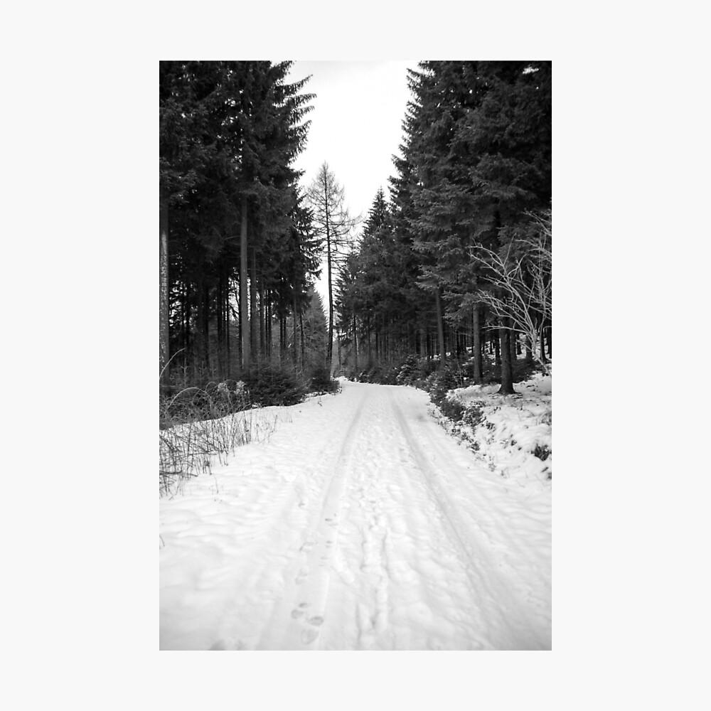 Winterlandschaft Fotodruck