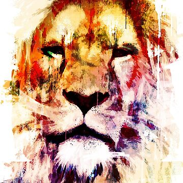 Africa painted lion  by johannbrangeon