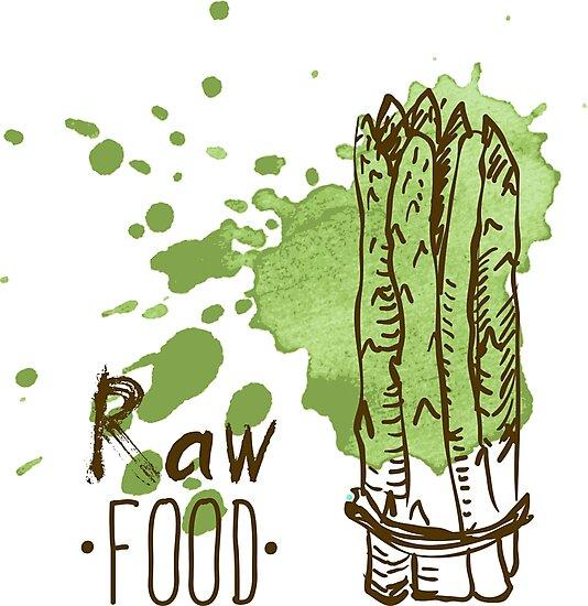 hand drawn vintage illustration of asparagus by OlgaBerlet
