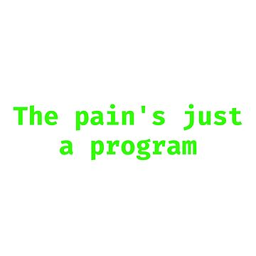 The pain is just a program by boogah