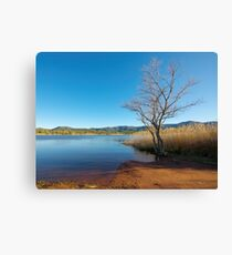 Earth, water and sky Canvas Print