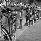Modern Transportation by RonSparks