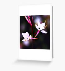 Colour Of Life XVII Greeting Card
