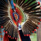 Native Feathers by dmvphotos
