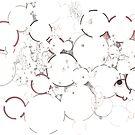 Porosity (porogenetic) by Regina Valluzzi