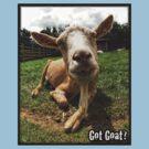 Got Goat? by Jonathan Hughes