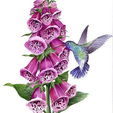 foxglove and hummingbird by gabo2828