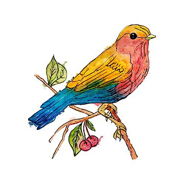 European Robin by Pintarrajearte