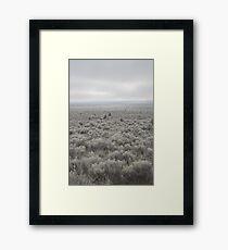 Sagebrush Sea , Oregon , United States of America   Framed Print